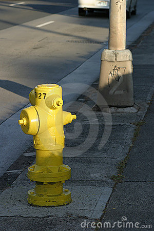 Street Scene with Fire Hydrant