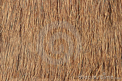 Straw Roof Texture for Background