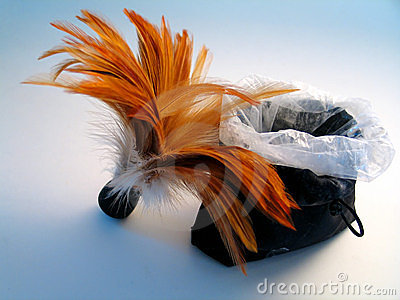 Feather Brush with Powder Bag
