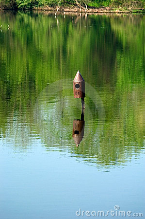 Birdhouse in water