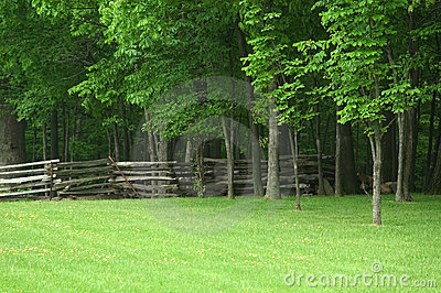 Split Rail Fence Ohio