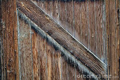 Wood texture-2
