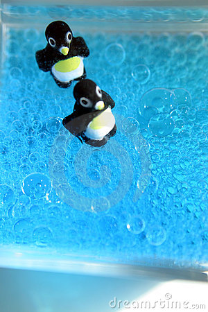 Bubbly Penguins