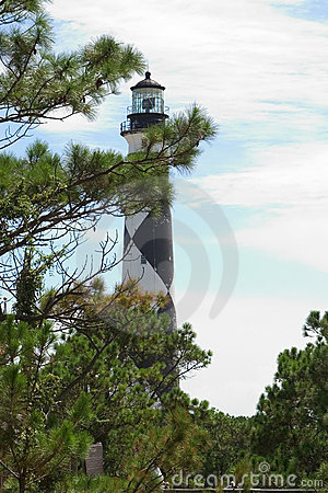 Lighthouse through the Trees