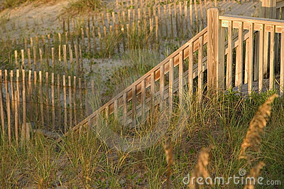 Stair Railing and Fences