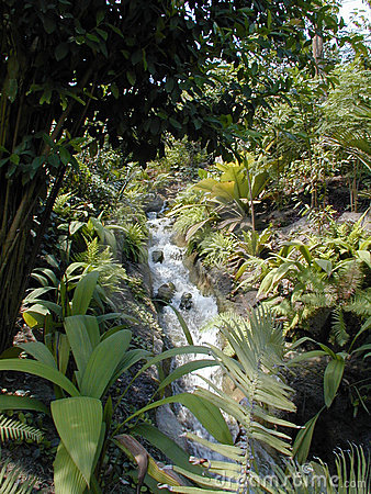 Stream in a Biome