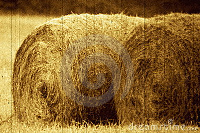 Old bails of hay