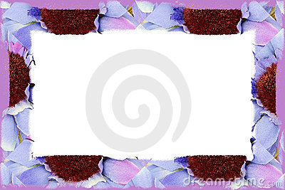 Flower Fabric Border Over White