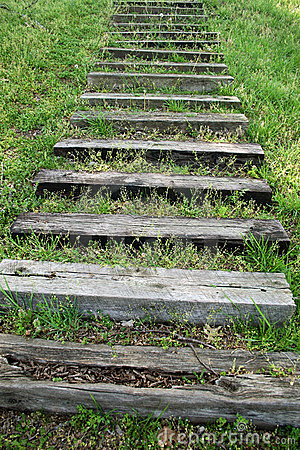 Steps In The Grass
