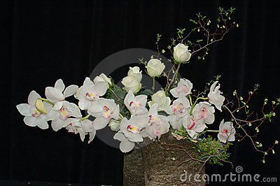 Orchids and roses composition