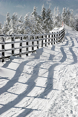 Fence and shadow in the winter