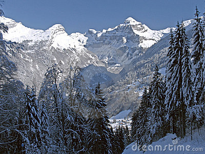 Flaine - Tree-lined valley with snow-capped peak