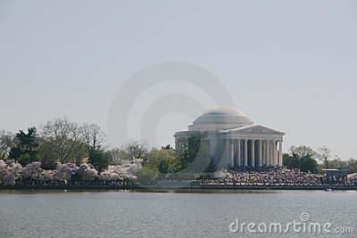 Jefferson memorial w/ blossoms