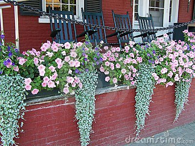 Flower Boxes on Porch