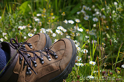 Hiking boots in field of daisys