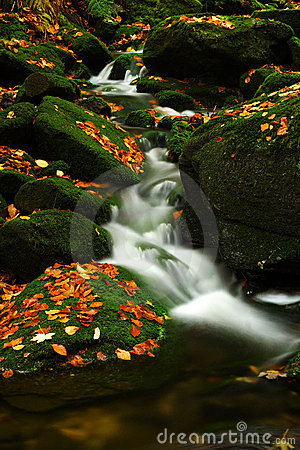 Autumn stream in Giant mountains
