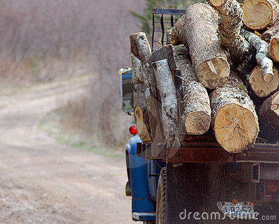 Load of Wood