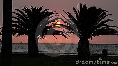 Sunset in palms
