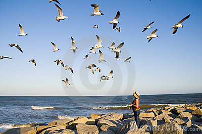 Woman feeding a gaggle of seagulls