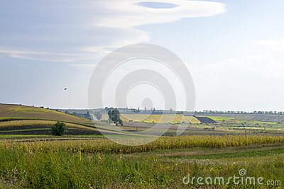 Agrarian open spaces