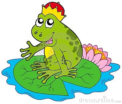 Frog prince on water lily