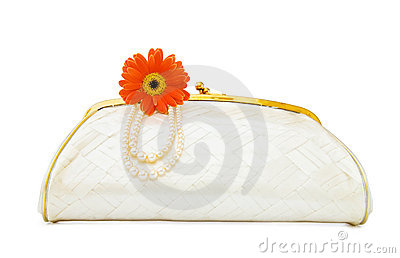 Vintage Mother of Pearl evening bag on white