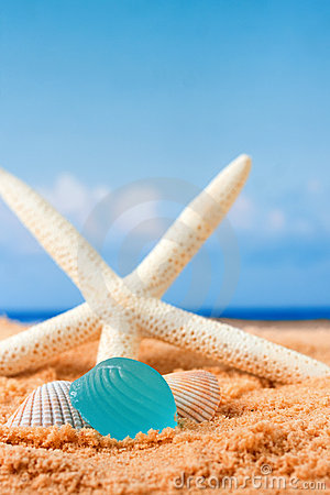 Beach glass and starfish