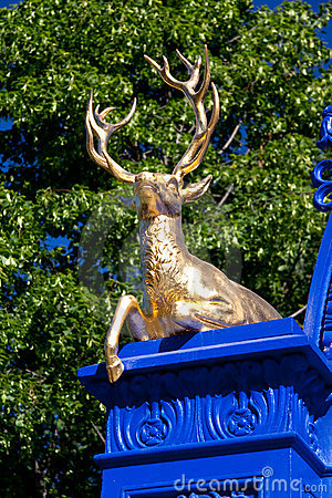 Golden Deer in the royal park Djurgarden,Stockholm