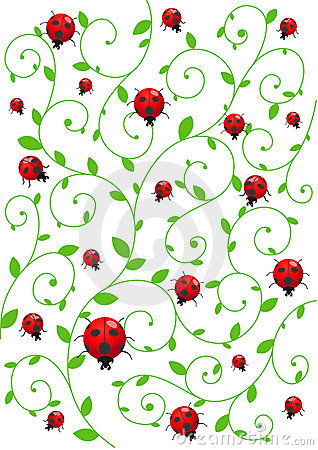 background with ladybirds