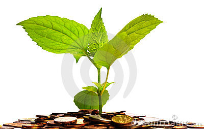 Plant in coins