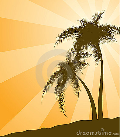 Orange  background with palm trees