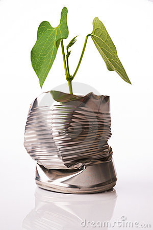 Recycling concept plant growing out of tin can