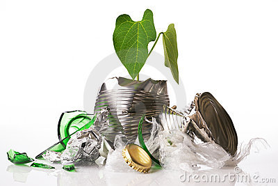 Recycling concept plant growing out of rubbish