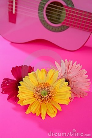 Hippie flower yellow pink gerbera on guitar