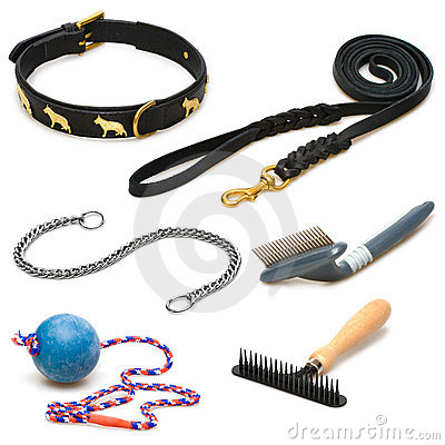Tools and toys for pets