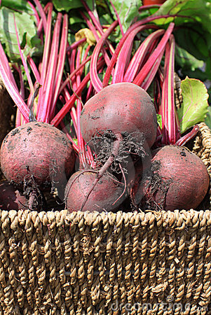 Beetrot In a Basket