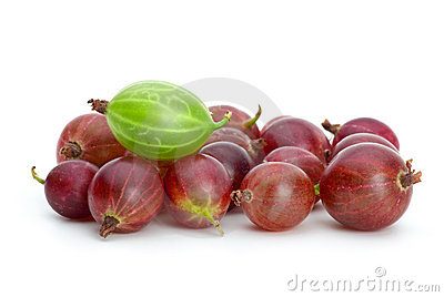 Pile of purple gooseberries and green on the top