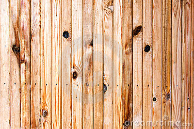 Pine wooden plank