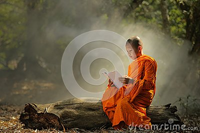 Novice is learning religion in forest.