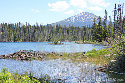 Mount Bachelor from Elk Lake