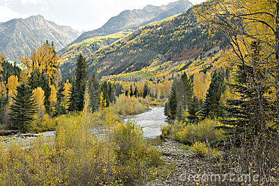 Colorado Autumn Stream