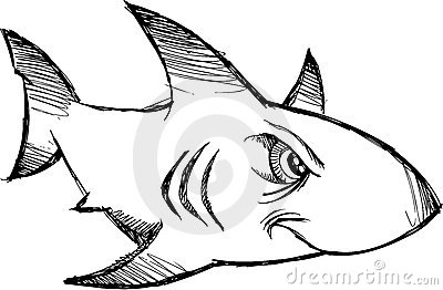 Sketchy shark Vector