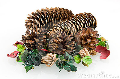 Pine cones with decoration