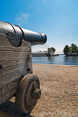 Fort cannon