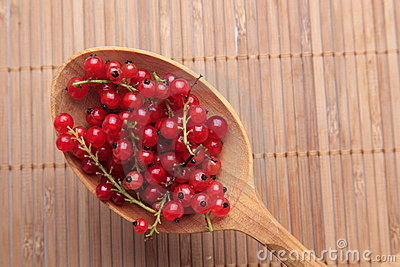 Spoon full of red currants
