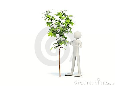 Man with tree