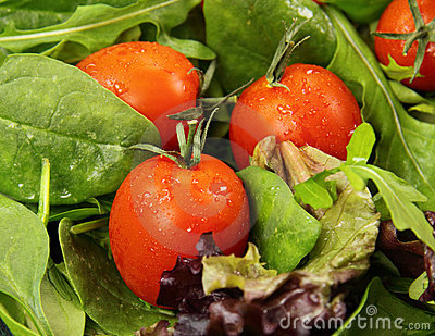 Tomatoes And Lettuce