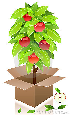 Vector apple tree.