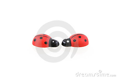 Two wooden ladybirds