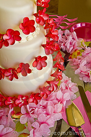 Wedding Cake In Pink and Red